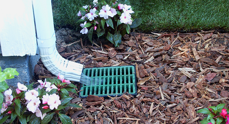 Drainage systems designed and installed by Pacific Lawn