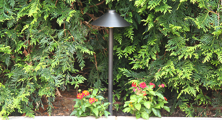 Professional landscape lighting company