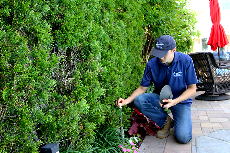 Lawn sprinkler and landscape lighting specialists